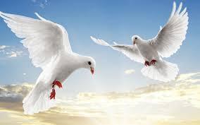 paix2